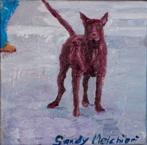 "Sayulita Guard Dog 10"" x 10"" – Oil Original – $250"